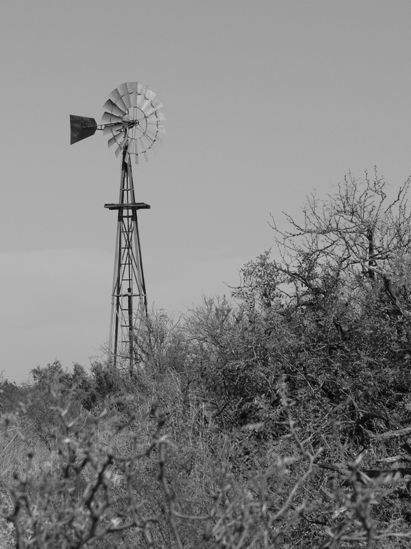 black-and-white-windmill