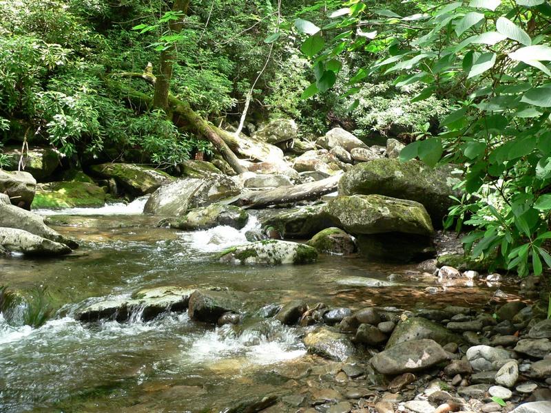 Resized Great Smoky Mountains Photos 001