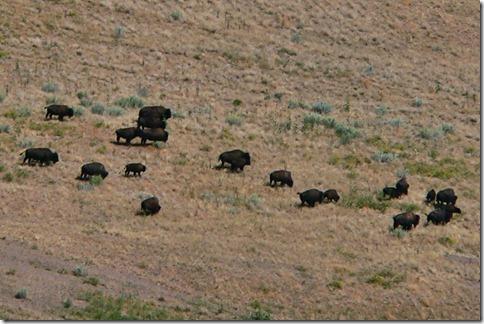 Antelope State Park 023