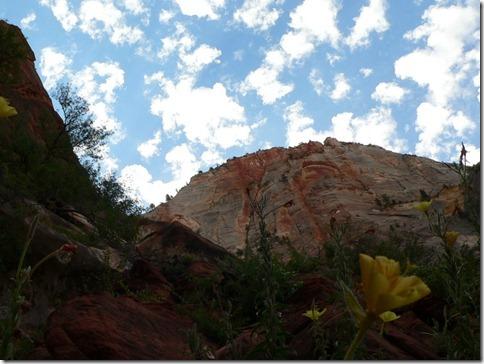 Sky Zion National Park 036