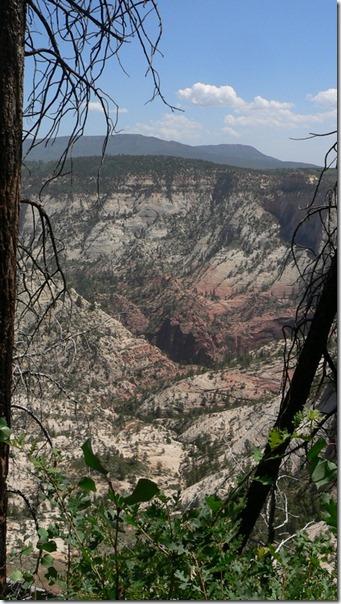 View Zion National Park 015