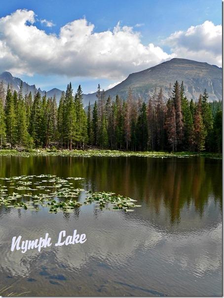 Nymph Lake Rocky Mountain 055