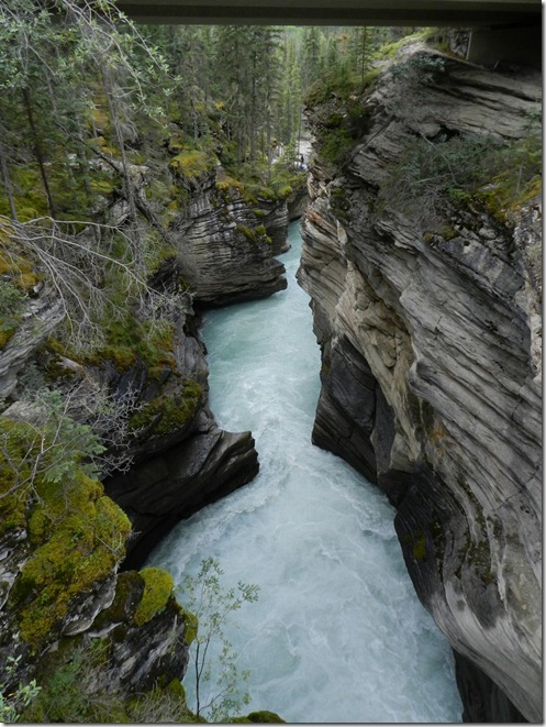 Alaska 2012 011