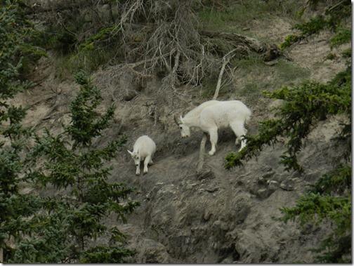 Alaska 2012 052