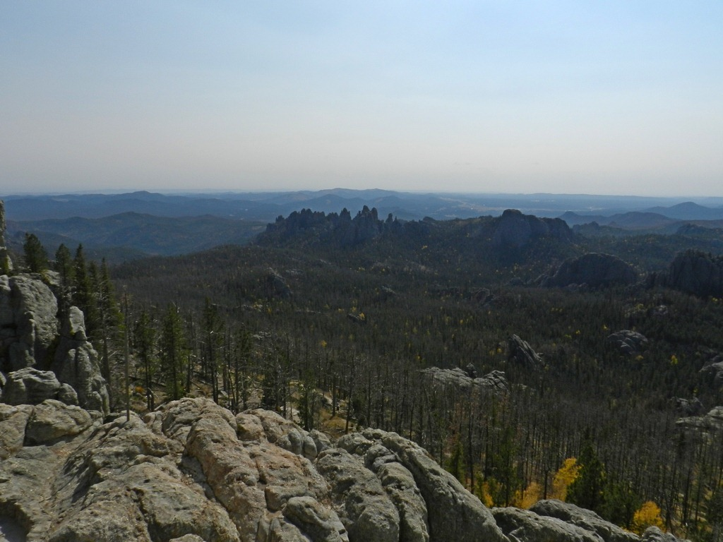 To the Hills (that is, Black Hills) for fly fishing